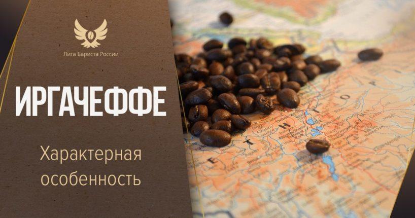 Иргачеффе. Особенности кофе