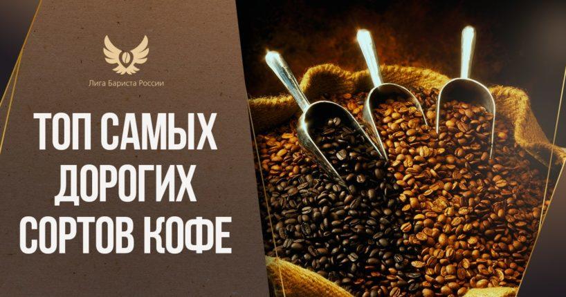 Топ самых дорогих сортов кофе