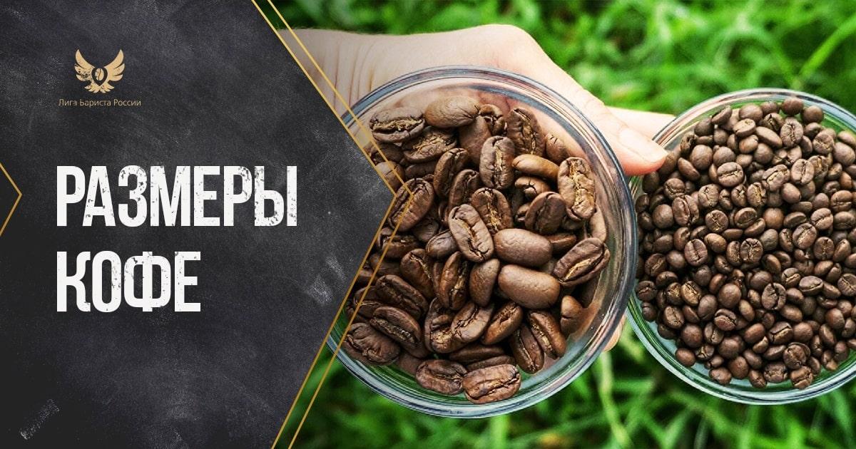 Размеры кофе